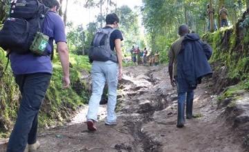 Rwanda hiking safaris