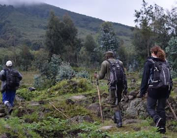 Mount Karisimbi Hiking rwanda